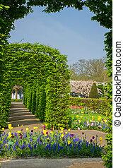 primavera, jardín, países bajos,  Keukenhof