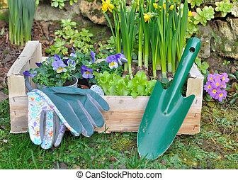 primavera, jardinería, composición