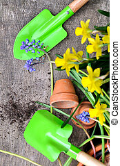 primavera, jardinería, concepto