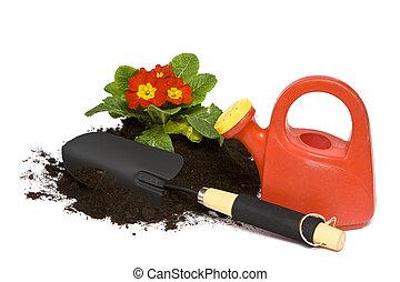 primavera, jardinería