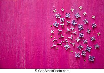 primavera, lilla, fiori, e, erba, su, legno, fondo
