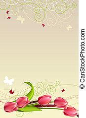 primavera, marco, tulipanes