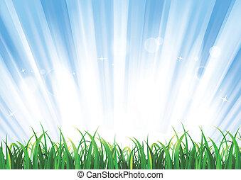 primavera, o, verano, salida del sol, pasto o césped, paisaje