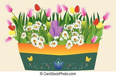 primavera, olla
