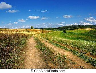 primavera, paisagem, com, estrada