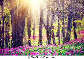 primavera, parque, con, hierba verde, florecer, flores salvajes, y, árboles., hermoso, paisaje de la naturaleza