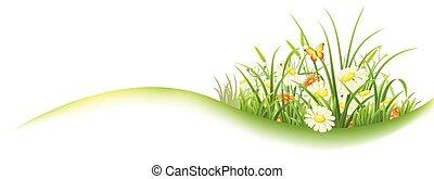 primavera, pasto o césped, bandera, verde
