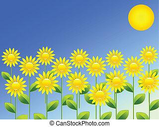 primavera, plano de fondo, con, girasoles