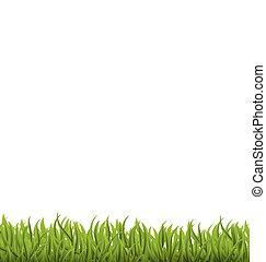 primavera, plano de fondo, con, hierba verde, espacio, para, su, texto