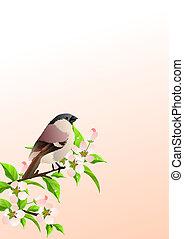 primavera, plano de fondo, lila, rama, gorrión