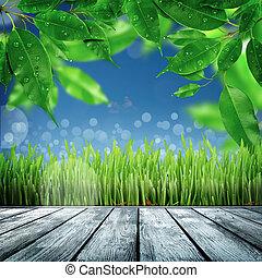 primavera, Plano de fondo, naturaleza