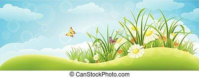 primavera, plano de fondo, pradera