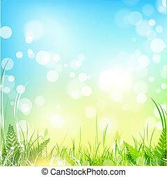 primavera, prado, com, céu azul