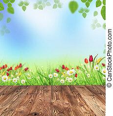 primavera, prato, con, assi legno