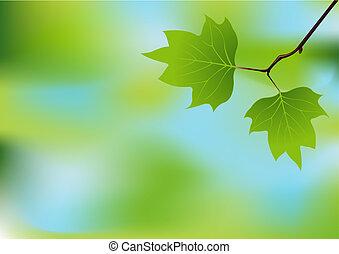 primavera, ramo, fundo