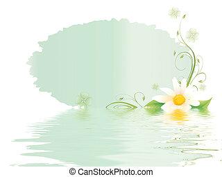 primavera, scheda