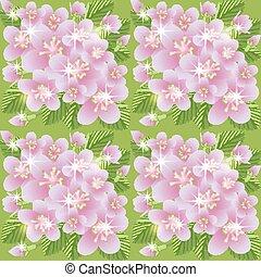 primavera, seamless, modello, vettore, illustrazione, sakura
