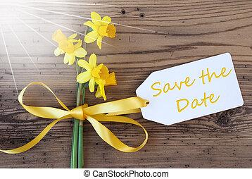 primavera, soleado, etiqueta, narciso, texto, fecha, excepto