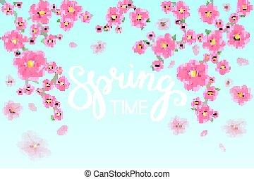 primavera, time., sakura, giappone, ciliegia, ramo, con, azzurramento, flowers., h