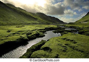 primavera, valle, escocia, verde