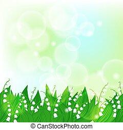 primavera, valle, giglio, scheda, fondo