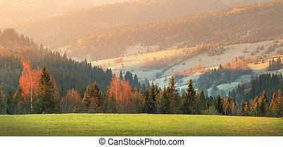 primavera, valle, verde, tempo