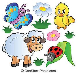 primavera, vario, animali, felice