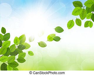 primavera, vector, con, hojas