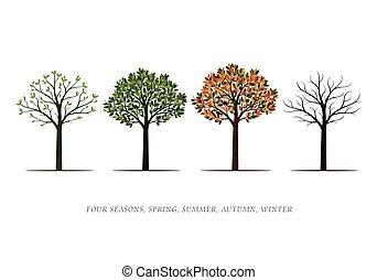 primavera, verão, outono, inverno, árvores., vetorial, illustration.