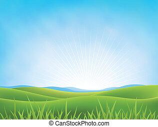 primavera, verano, praderas, plano de fondo, o