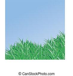 primavera, vettore, erba verde, fondo