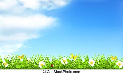 primavera, vettore, fondo