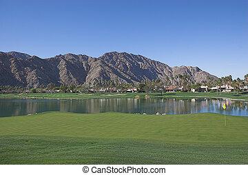 primavere, palma, campo golf