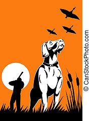 primeiro plano, caçador, cão