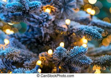 primer plano, árbol invierno, verde de la nieve, navidad