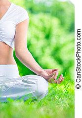 primer plano, de, mano femenina, zen, el gesticular