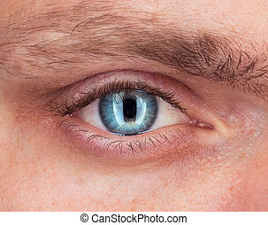 primer plano, de, ojo azul, un, hombre