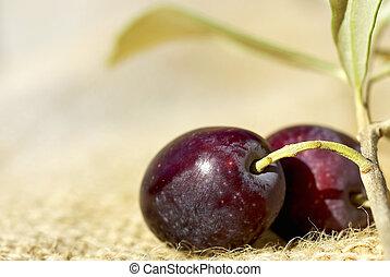 primer plano, de, olives.