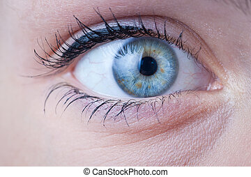 primer plano, de, un, hermoso, hembra, ojo azul