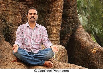 primer plano, foto, de, un, guapo, indio, ejecutivo, hacer, meditación, debajo, un, árbol, en, un, park., el, persona, es, sentado, en, postura lotus, y, es, calma, relajado, cierre, el suyo, ojos, para, mejor, concentración