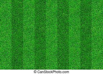 primer plano, imagen, de, fresco, primavera, hierba verde