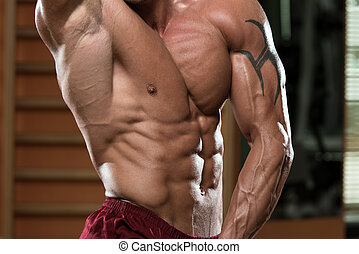 primer plano, músculo, abdominal