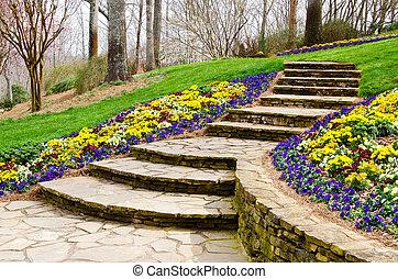 primero, pasos, jardín
