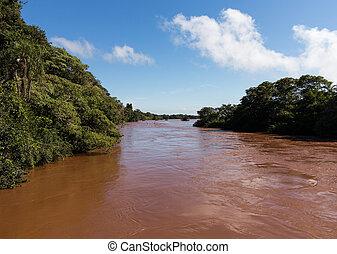 primero, río, caídas de iguassu