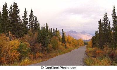 Primitive Gravel Road Leads on Autumn Fall Folaige Alaska -...