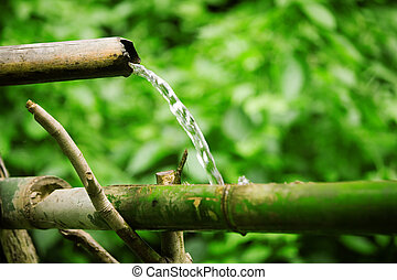 Primitive plumbing - Bamboo lengths of pipe set up to direct...