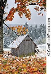 primo, autunno, improvviso, neve