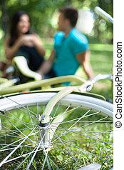 primo piano, bicicletta, rilassante, seduta, coppia, parco, giovane, mentre, altro, insieme., ciascuno, chiudere, dire bugie