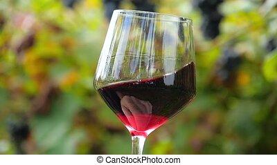 primo piano, di, uno, vetro vino rosso
