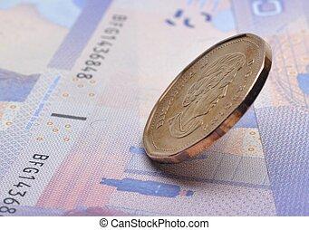 primo piano, dollaro, canadese